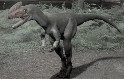 プロケラトサウルス